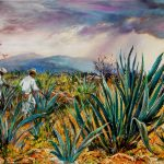 agave-field-mexico-24x30